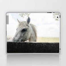 White Horse Laptop & iPad Skin