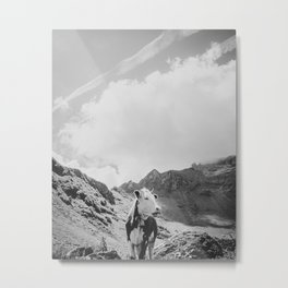 Cow with bell in the Swiss Alpes, Switzerland | Cloudy mountains and rocks | Black and white travel photography Metal Print