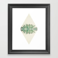 Echeveria II Framed Art Print
