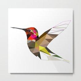 Pink hummingbird portrait Metal Print