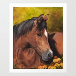 Little Brown Filly Art Print