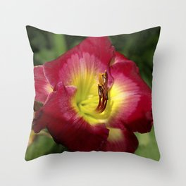 Rich red daylily Joan Derifield Throw Pillow