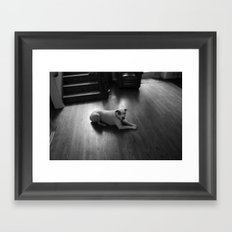 Dawg: 3 Framed Art Print