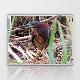 Too Cool Bird ( Green Herron) Laptop & iPad Skin