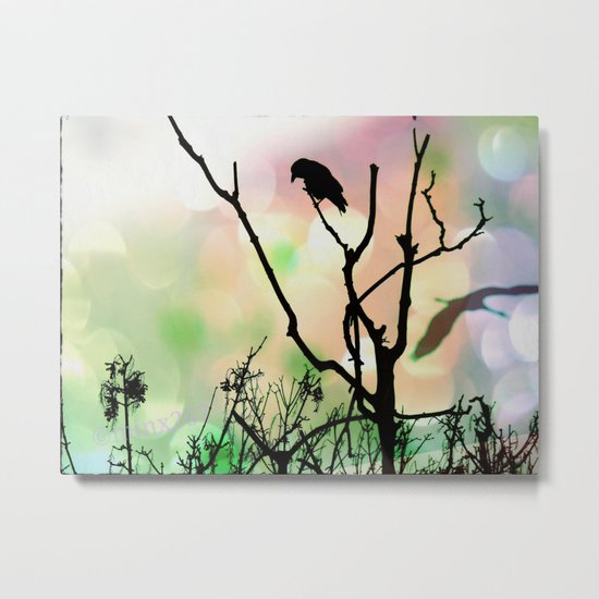 The Lonely Crow At Sunset Metal Print
