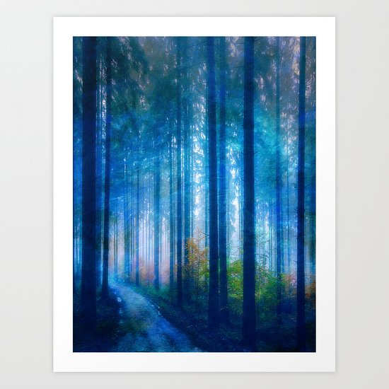 Amazing Nature - Forest by klaraacel