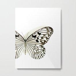 Black & White Butterfly On White... Metal Print