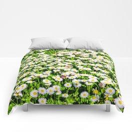 Field of daisy flowers Comforters