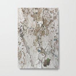 White Decay III Metal Print