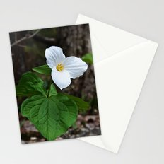 Trilliums  Stationery Cards