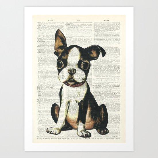 Boston Terrier Vintage Puppy Art Print
