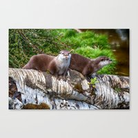 otters Canvas Prints featuring European Otters by Chris Thaxter