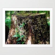 it's a stump Art Print
