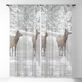 Watercolor Elk Cow 19, Tic-Toe-Tac Sheer Curtain