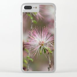 Desert fairy dusters Clear iPhone Case