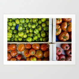 Colorful tomatoes Art Print