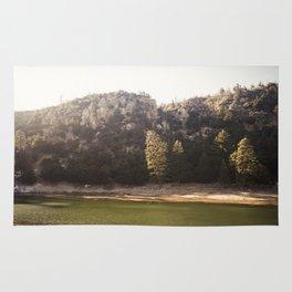 Crystal Lake, CA Rug