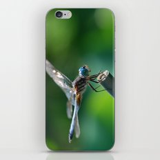 Pinpoint iPhone & iPod Skin