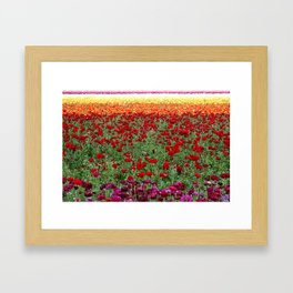 Field of My Dreams! Framed Art Print