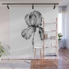 Flower Painting | Iris | Minimalism | Black And White | Rustic | Art Print Wall Mural