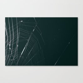 web Canvas Print