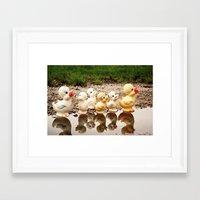 ducks Framed Art Prints featuring Ducks by Teodoru Badiu