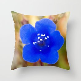 Desert Bluebell Alternate Perspective Throw Pillow