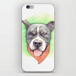 Pitbull - Love is blind - Stevie the wonder dog iPhone Skin