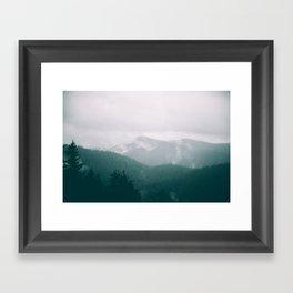 Forest Fog XVI Framed Art Print