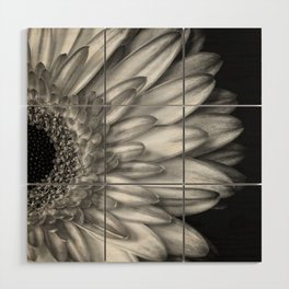Black And White Print of Gerber Daisy Wood Wall Art