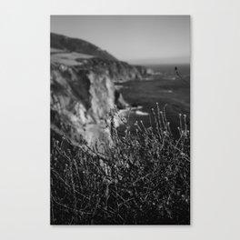 Big Sur Wild Flowers Canvas Print
