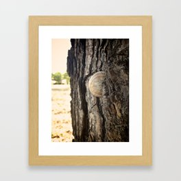Bumpy Road Framed Art Print