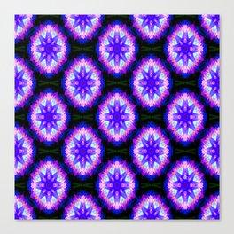 Sea Urchins.... Canvas Print