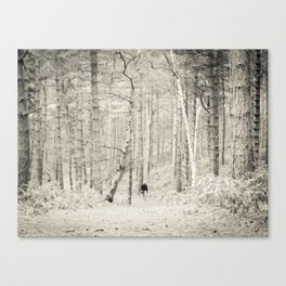 Forest Walk I Canvas Print