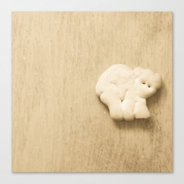 Animal Cracker - wood3 Canvas Print