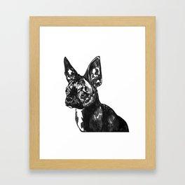 Chia pet Framed Art Print
