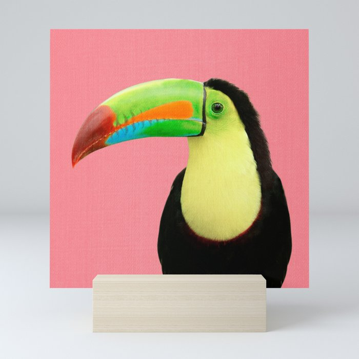 Toucan Bird - Pink Mini Art Print