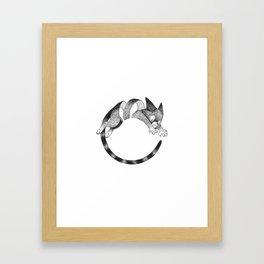Cat Loop Framed Art Print