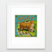 goat Framed Art Prints featuring Goat! by Connie Goldman