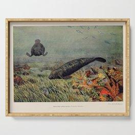 Vintage Animal Print - 1904 - Manatees Underwater Serving Tray