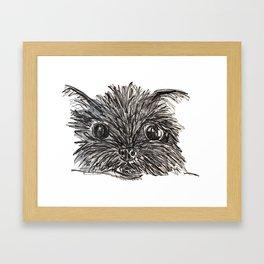 Hairy dog Framed Art Print