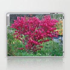Red Bush Laptop & iPad Skin