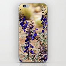 Blue Desert Lupine iPhone Skin