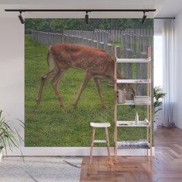 Cemetery deer Wall Mural
