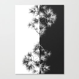 Nature pattern Canvas Print