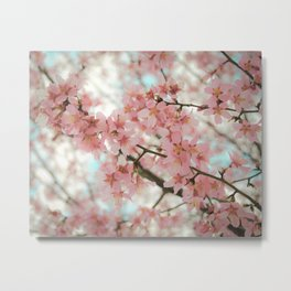 Reverence (Cherry Blossoms) Metal Print