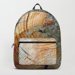 Undiscovered Photography Backpack