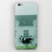 rustic iPhone & iPod Skins featuring Rustic by Susann Mielke
