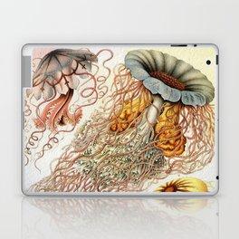 SEA CREATURES COLLAGE-Ernst Haeckel Laptop & iPad Skin