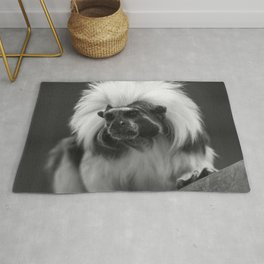 tamarin with a crown of cotton Rug